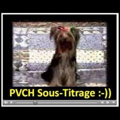 Pvch Sous-Titrage :-)